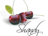 Shandy Banquetes